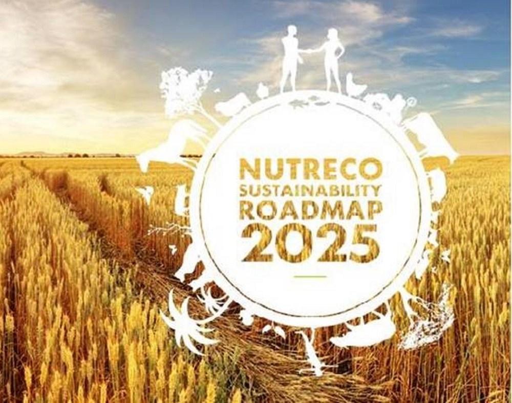 Sustainability RoadMap 2025